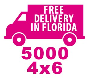 4X6 Flyers<br>Free Shipping in Florida Special